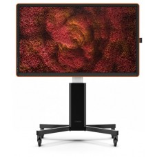 """CTOUCH CANVAS 65"""" REGAL ORANGE INGLASS OPTICALLY BONDED TOUCH, NO-OS TOUCH DISPLAY, INTERACTIVE CANVAS FRAME 10052565 (DEMO PURPOSES MAX. 1 UNIT PER CUSTOMER) (Espera 4 dias)"""
